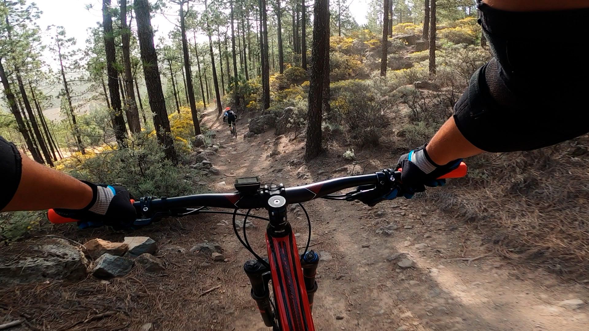 Ruta Pico de las Nieves - Telde