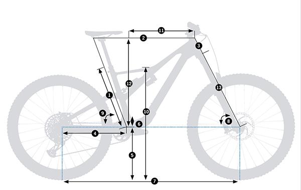 Geometría Orbea Rallon 2022